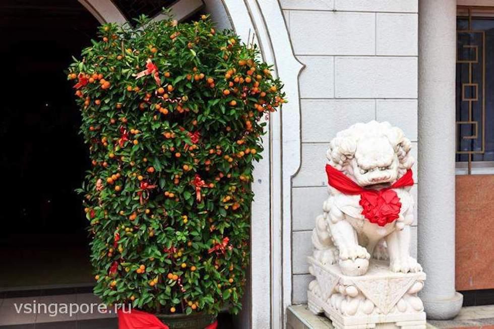 Отели в Сингапуре на Китайский Новый год