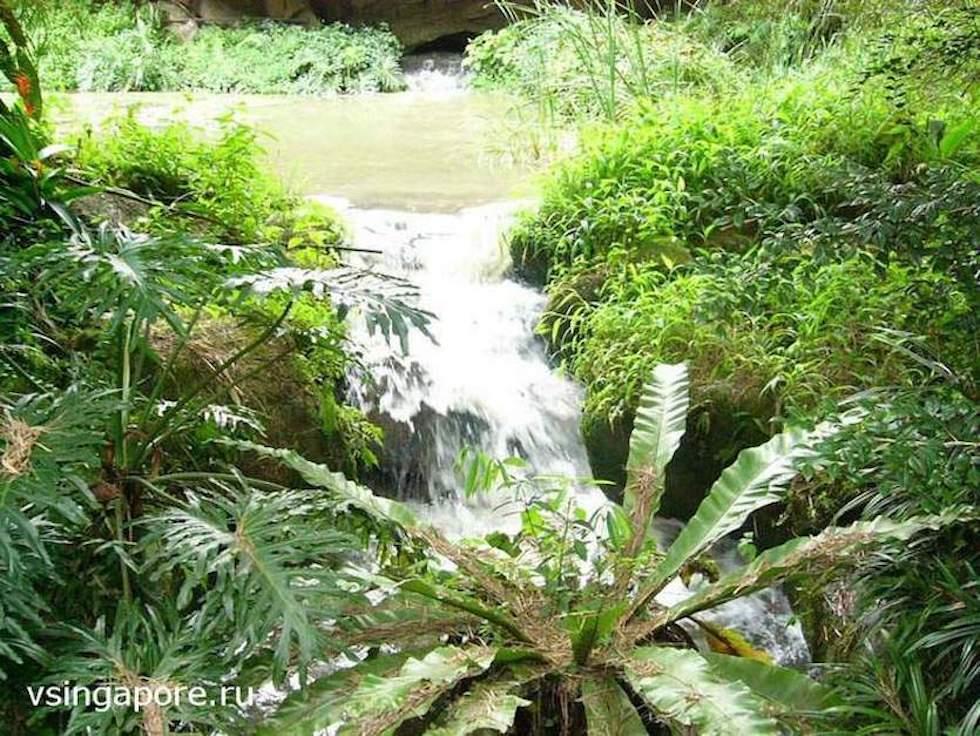 Водопад в Сингапурском Парке птиц