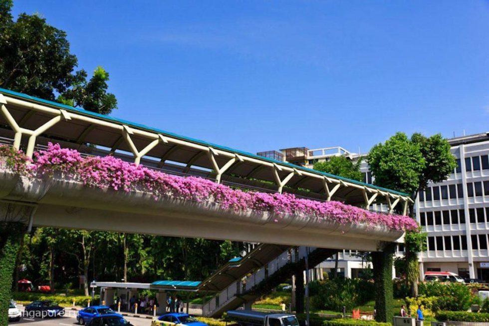 Пешеходный переход в Сингапуре