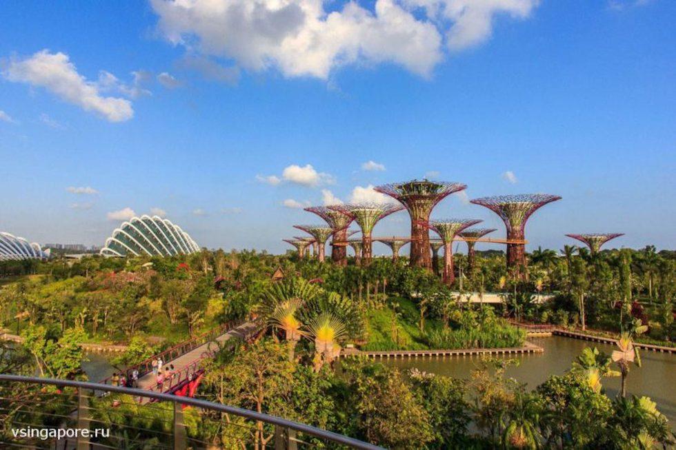 Сады у Залива и холодные теплицы Сингапур