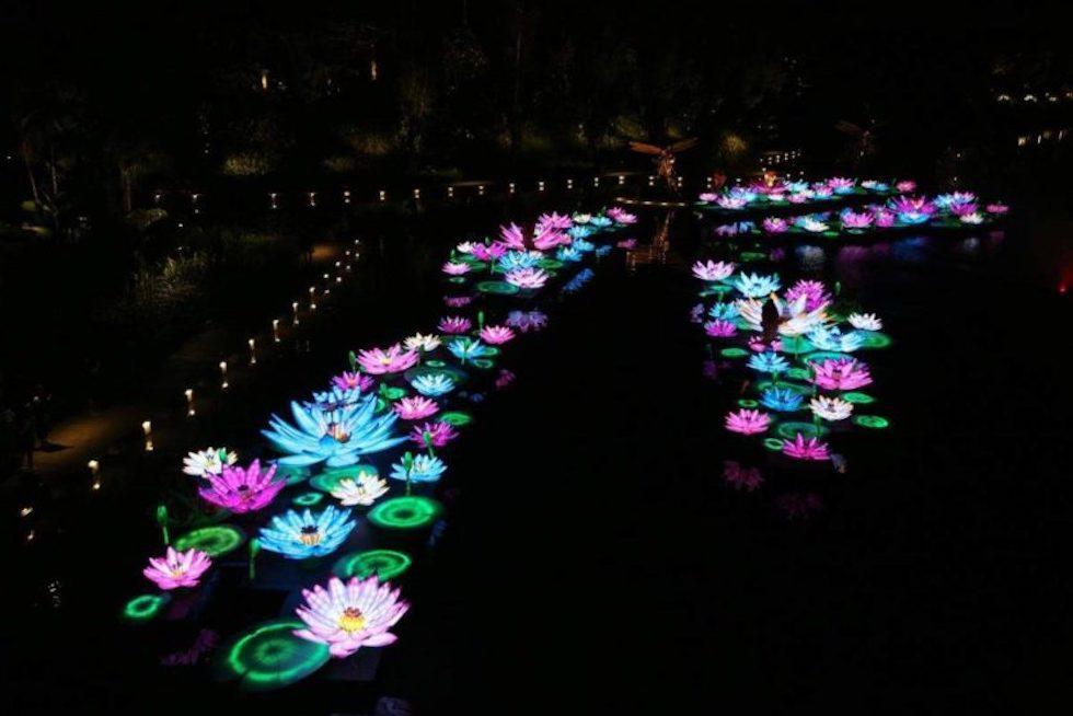 Фестиваль Середины Осени в футуристических Садах Сингапура